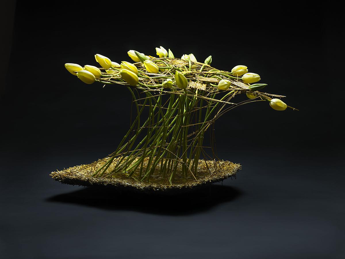 Pim van den akker | floral design.
