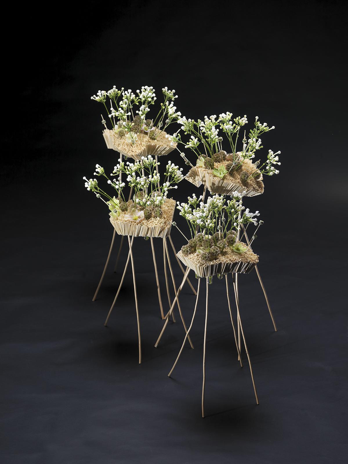Making everyday life extraordinary - with flowers | pim van den.